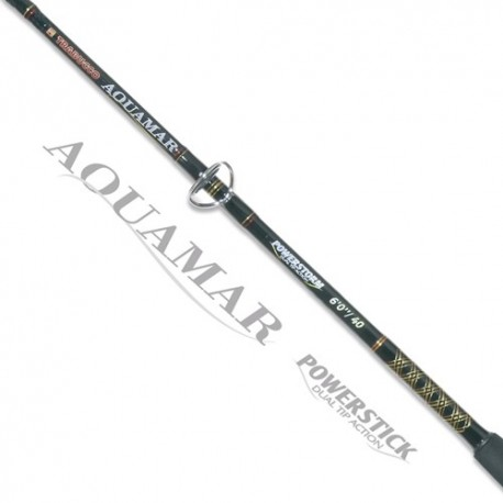 Canna Trabucco AQUAMAR POWERSTICK Dual Tip Action
